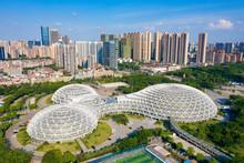 City Environment Of Wenhua Park Gymnasium, Foshan City, Guangdong Province, China