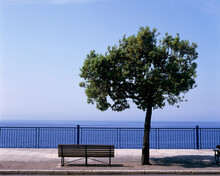 Lonely Bench On The Sea With T...