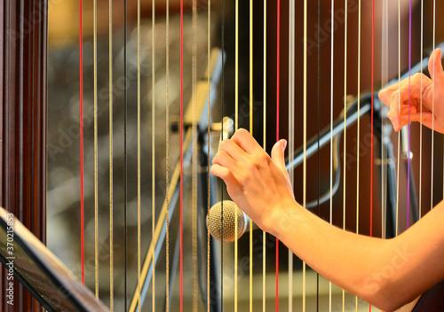 Stampa su Tela Woman playing the harp close up