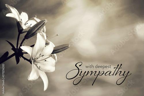 Sympathy card with lily flowers Fototapeta