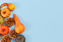 Seasonal Autumn Flat Lay With Various Small Pumpkins And Pine Cones At Side Of Light Blue Background With Empty Copy Space