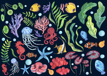 Big Watercolor Set Of Hand-drawn Illustrations On An Ocean Theme. Sea Reef Fish, Octopuses And Jellyfish, Corals, Seaweed And Plants, Air Bubbles And Snails For Colorful Summer Design