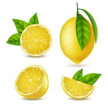Realistic Detailed 3d Yellow Lemon Slices Set. Vector