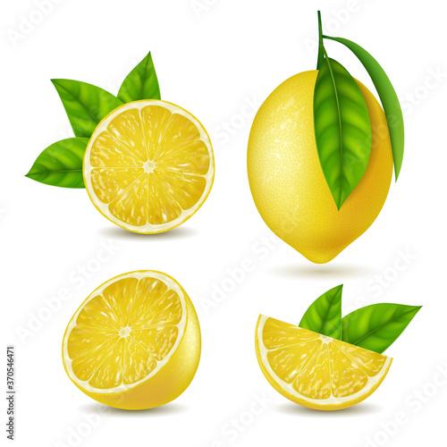 Realistic Detailed 3d Yellow Lemon Slices Set. Vector Fototapeta