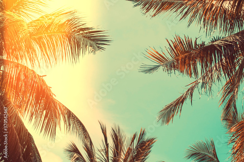 Copy space of silhouette tropical palm tree on sunset sky with bokeh light leak abstract background. Summer vacation and nature travel adventure concept.