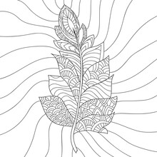 Line Drawn Bird Feather With S...