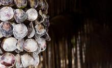 Hanging Decor Made Of Shells. ...