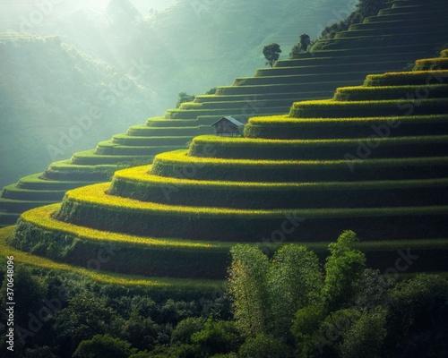 Obraz na płótnie stairs to heaven