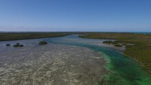 Aerial View Of A Mangrove Channel Estuary In The Tropics Tracking