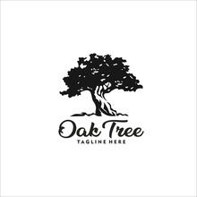 Oak Tree Logo Design Silhouette Vector