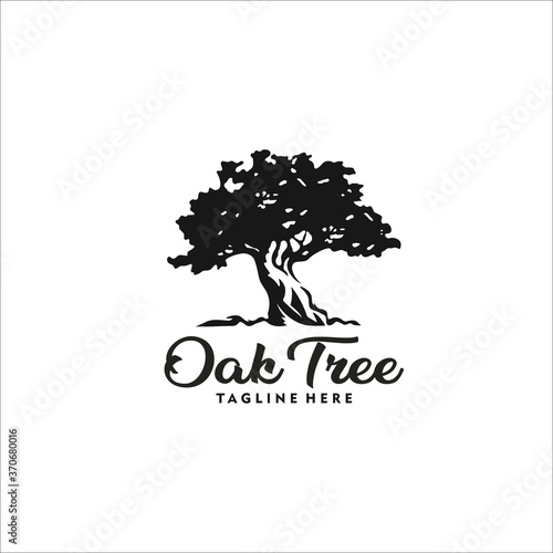 Fotografie, Obraz oak tree logo design silhouette vector