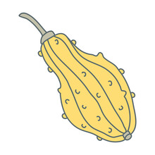 Warty Or Pimpled Yellow Gourd In Cartoon Flat Style With Lines. Hand Drawn Vector Illustration Isolated On White Background. Farming Garden Theme.