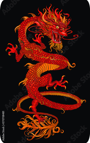Fototapeta red traditional Chinese dragon symbol on a black background  vector illustration obraz