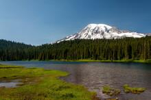 Mount Mt. Rainier Cascade Range Pacific Northwest Washington View Of Mountain Peak And Pine Tree Forest From Lake
