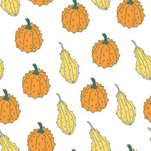 Vector Seamless Pattern With Pimpled Orange And Yellow Gourds In Cartoon Flat Style With Lines. Great For Fabrics, Wrapping Papers, Wallpapers, Covers. Autumn Farming Garden Theme. White Background.