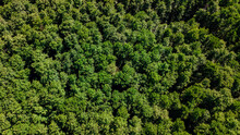 Aerial View From Drone Of A Lu...