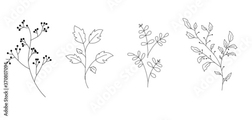 Set of vector doodle branch