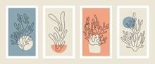 Abstract Coral Posters. Contemporary Organic Shapes Minimalistic Matisse Style, Colorful Corals, Graphic Vector Illustration