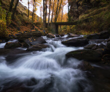 Spectacular Scenery Of River With Rocks Flowing Through Green Woods In Long Exposure
