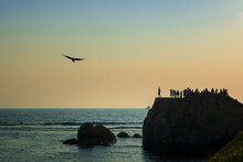 Silhouettes Of Unrecognizable People Standing On Rocky Cliff And Admiring Spectacular Sunset Over Calm Sea With Bird Flying Against Colorful Evening Sky In Galle City In Sri Lanka