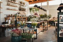 Interior Of Modern Floral Shop...
