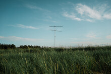 Peaceful Landscape Of Meadow With Green Grass And Antenna On Sunny Day On Background Of Blue Sky