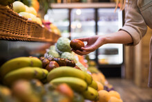 Cropped Image Of Woman Buying Tomatoes At Grocery Store