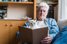 Senior Man Reading Book While Sitting With Cat On Sofa At Home
