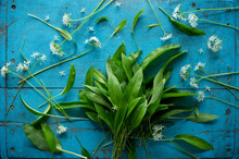 Wildflowers And Fresh Ramson (...