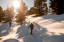 Austria, Carinthia, Reichenau, Nockberge, Falkert, Rear View Of Man Ski Touring At Sunset
