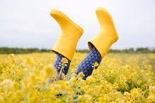 Girl's Legs In Yellow Rubber Boots In Rape Field