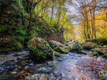 Slovenia, Soca River Flowing Between Mossy Boulders In Autumn Forest