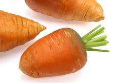Carrot, Daucus Carota, Vegetable Against White Background