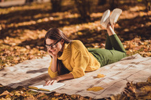 Full Size Profile Side Photo Of Focused Positive Girl Rest Relax Countryside Autumn Forest Lying Checkered Blanket Read Book Wear Yellow Color Jumper