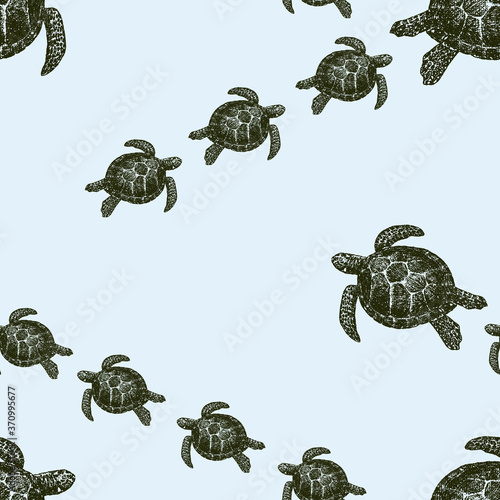 Photo Vector seamless background of drawn sea turtles swimming in water