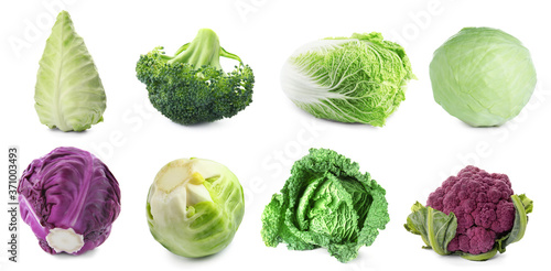Photographie Set with assortment of cabbages on white background