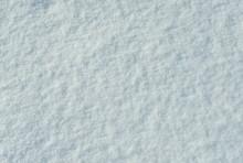 Fresh Fallen Snow