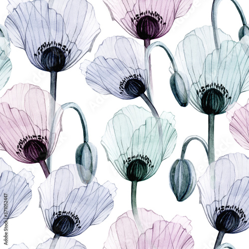 Tapeta fioletowa  seamless-watercolor-pattern-with-transparent-poppy-flowers-on-a-white-background-flowers-of-pastel-colors-of-blue-purple-pink-design-for-wallpapers-textiles-cards-weddings