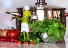 Froggy Cook With Vegetables And Herbs