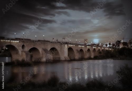 Fotomural Vista nocturna del Puente Viejo de Badajoz