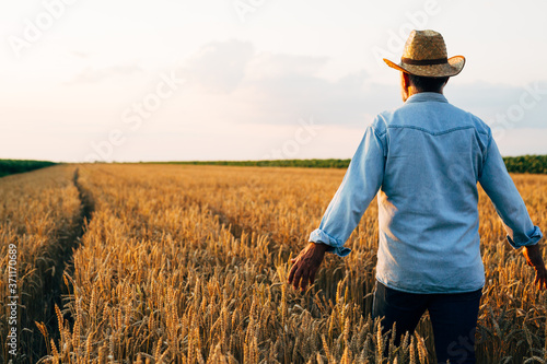 farmer walking through wheat field Wallpaper Mural