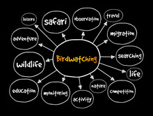 Birdwatching Mind Map, Concept For Presentations And Reports