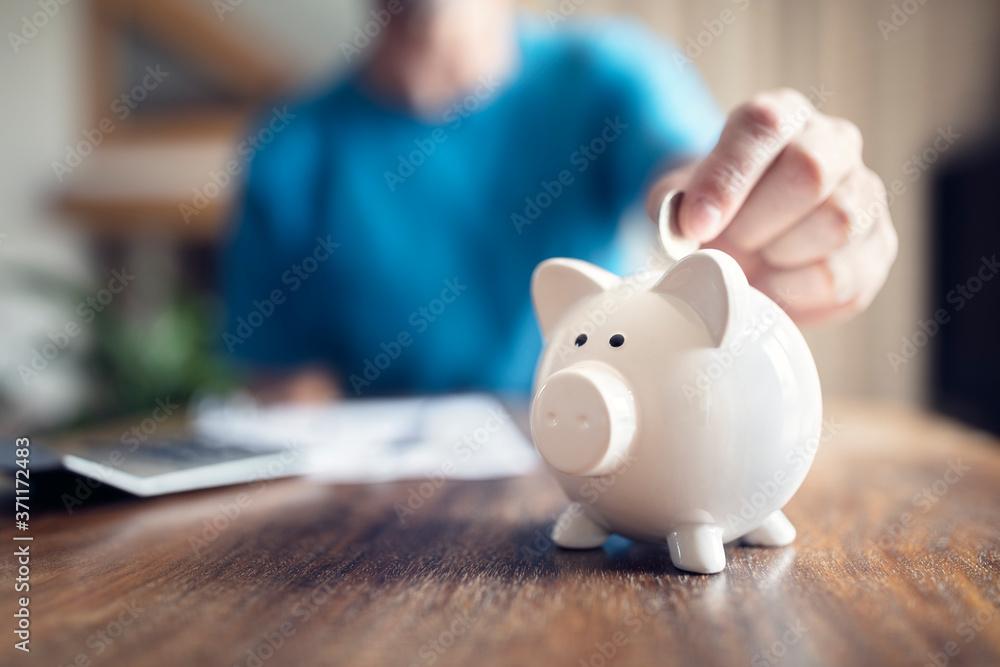 Fototapeta Piggy bank savings