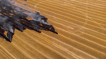 Fast-growing Smoking Fire In Dry Yellow Wheat Field