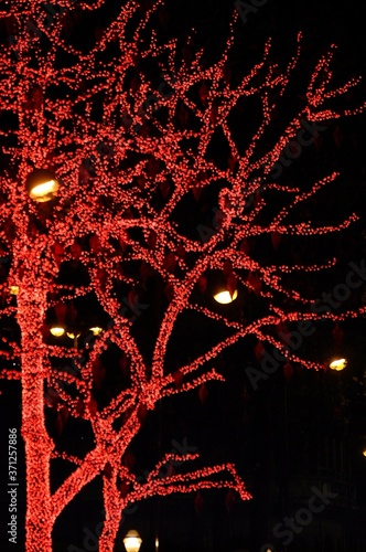 Tableau sur Toile Decorated Tree for Christmas at The Galeries Lafayette on Haussmann Boulevard in