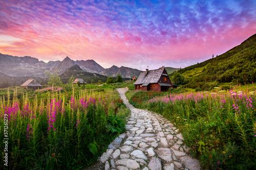 Fototapeta Beautiful summer sunrise in the mountains - Hala Gasienicowa in Poland - Tatras obraz