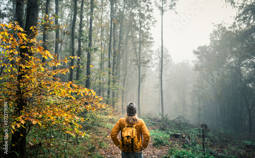 Hiking in misty morning at autumn forest Wallpaper Mural