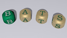 Bats Curved Text Of Cubic Dice...