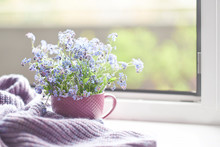 Violet Warm Plaid Blanket On Wooden Rustic Bench. Photo Toned, Selective Focus. Cozy Home Still Life: Spring Flowers With Warm Plaid On Windowsill