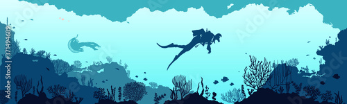 Fotografie, Obraz Underwater panorama illustration with fishes and underwater plants silhouettes